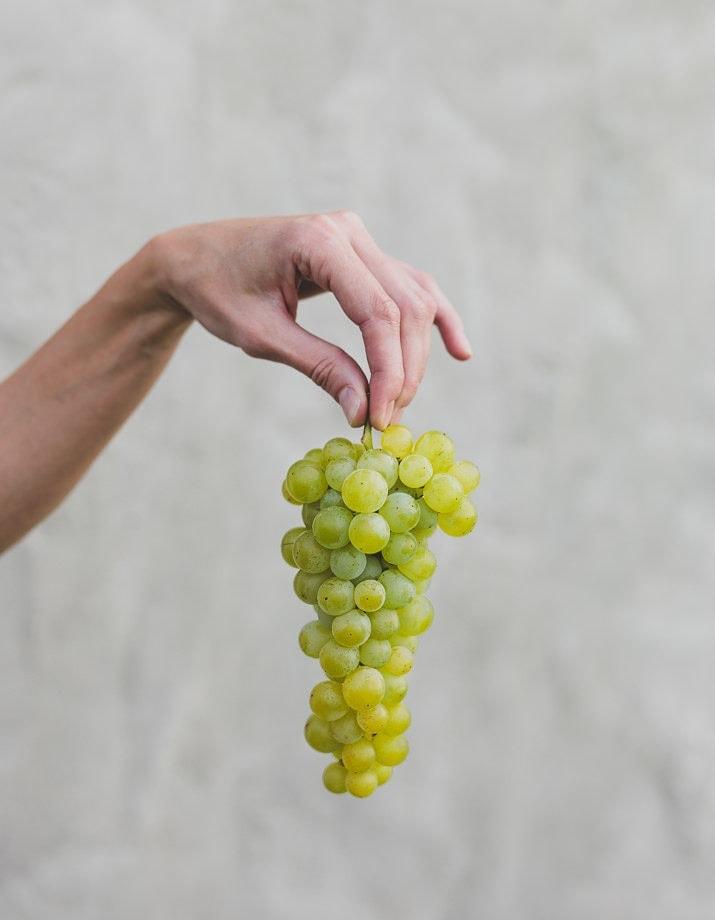 Weingut Daniel Jaunegg, Südsteiermark